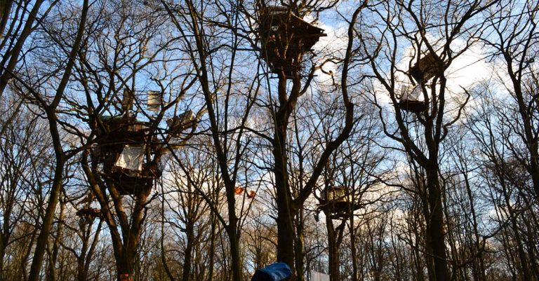 """<p>Foto von MaricaVitt [<a href=""""https://creativecommons.org/licenses/by-sa/4.0"""">CC BY-SA 4.0 </a>], <a href=""""https://commons.wikimedia.org/wiki/File:Gemeinsam_stark,Hambacher_Forst,NRW.jpg"""">from Wikimedia Commons</a> 